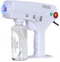 Blu Ray Anion Multifunctional Nano Spray Gun 1200W