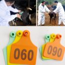 100 Pieces Ear Tag for Cow