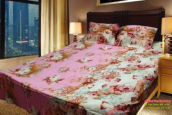 Twill Cotton Bed Sheet with Two Pillow Cover