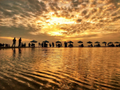 Dhaka to Cox's Bazar 2 Night Tour Package