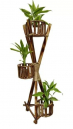 Bamboo and Cane Plant Stand