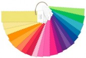 Pantone Fashion + Home FFN100 Nylon Brights Set