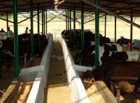 Dairy Farm / Agro / Fishery Management Software