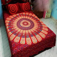 Twin Size Bed Sheet with Matching Pillow Cover