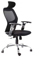 Director Chair CL-525HB