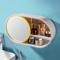 Wall Mounted Cosmetic Storage Mirror Box