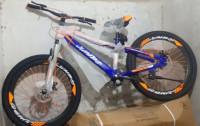 Jumbo Bicycle