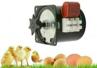 Egg Turning Motor for Incubator