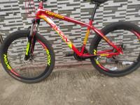 Avon Dual Disk Bicycle
