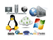 Solid Shared 1000 MB Linux USA Web Hosting Package