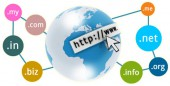 Domain Name Registration Service with Full Control
