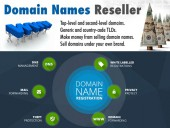 Domain Reseller Business Account with Financial Management