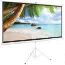Apollo 70 x 70 Inch Tripod Projector Screen
