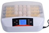 Automatic 32 Egg Hatchery Machine