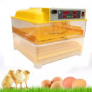 Fully Automatic 112 Egg Digital Incubator Machine