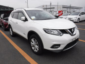 Nissan X-Trail Hybrid Pearl Color