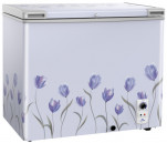 Walton WCF-2T5-FHLX-GX 205L Deep Freezer