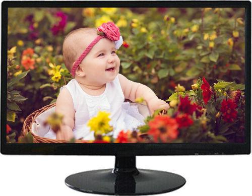 "Giga Sonic 18.5""  Wide Screen LED Computer Monitor"