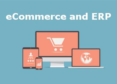 POS ERP Real E-Commerce Software