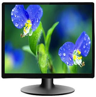 Gigasonic 17 Inch Square VGA Port TFT HD LED Monitor