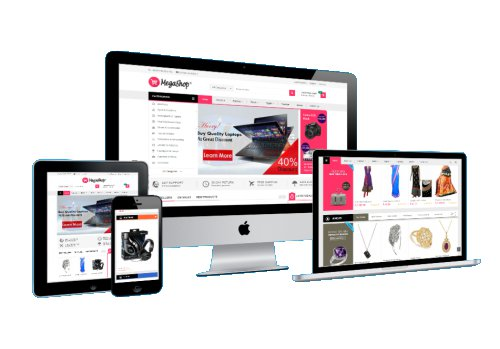 Business Website Design with e-Commerce Online Store